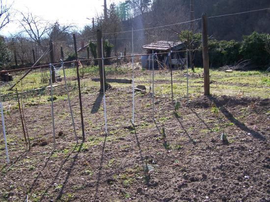 Le jardin encore au repos