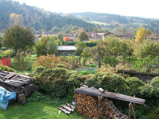 Le jardin de Tom Patate