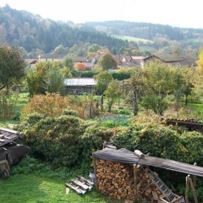 Les Temps Roux au jardin de Tom Patate